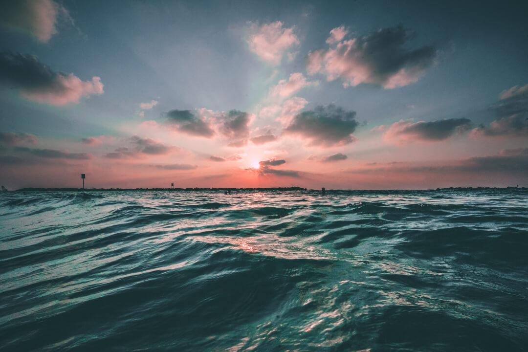 情報の海の泳ぎ方